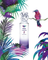 Sisley Eau Tropicale 1,6 ml
